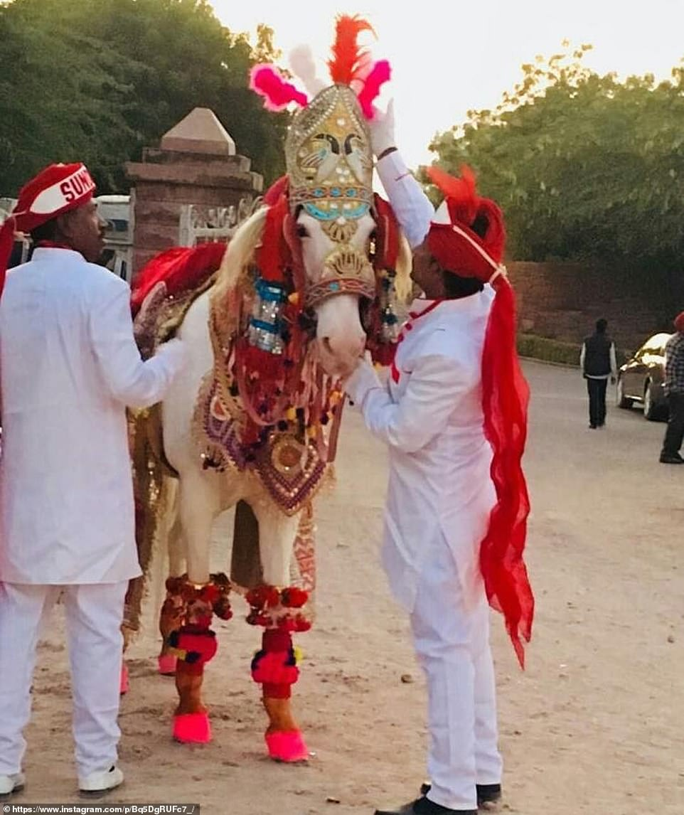 A mighty steed: In keeping with Hindu tradition, Nick rode to his Hindu wedding ceremony mounted on a decorated horse