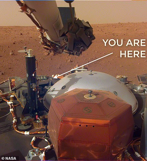 'We're ON MARS, you guys,' InSight's Twitter account posted today. 'You're all honorary Martians.'