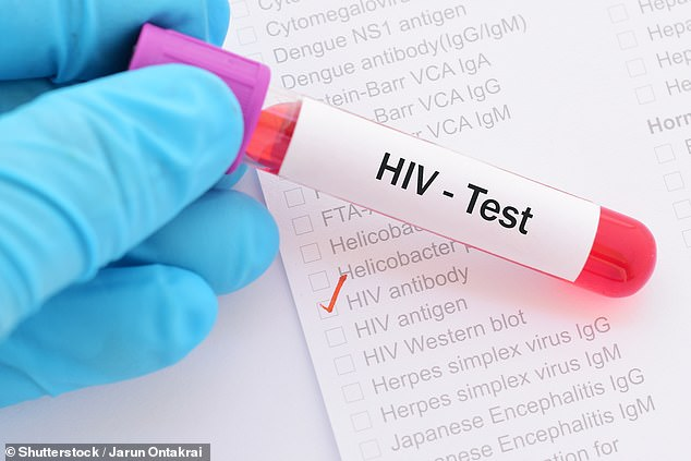 A study raises fresh hope for an HIV cure. Scientists believe they may be able to target the virus that lies dormant in cells where it is hidden from drugs and the immune system (stock)