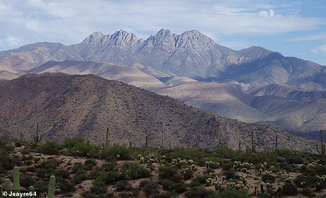 The two thieves broke into the Four Peaks Amethyst Mine, in the Tonto National Forest (pictured) near Phoenix