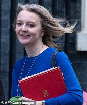 Britain's Chief Secretary to the Treasury Liz Truss