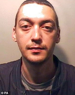 Daniel Kaye, 30, of Egham, Surrey,was sentenced at Blackfriars Crown Court on Friday to a total of 32 months in prison