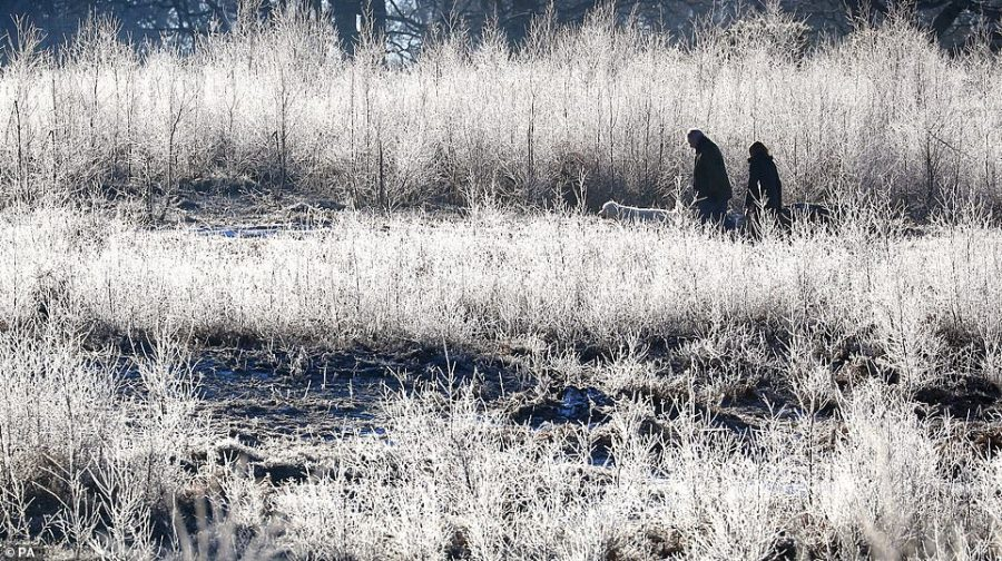 A couple walk through a frosty landscape with their dog near Ashford in Kent today after another sub-zero night