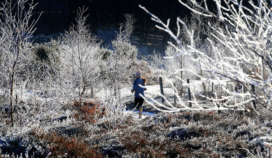 A woman runs through a frosty landscape near Ashford in Kent today after the UK had its coldest night of the winter so far