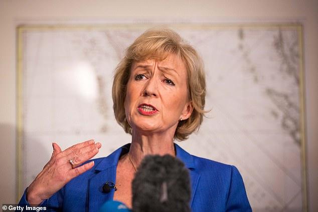 """Andrea Leadsom hat den Druck auf den Premierminister erhöht, HS2 aufzugeben, und äußerte die Befürchtung, dass der Geschäftsvorfall für die Eisenbahnverbindung """"nicht mehr besteht""""."""