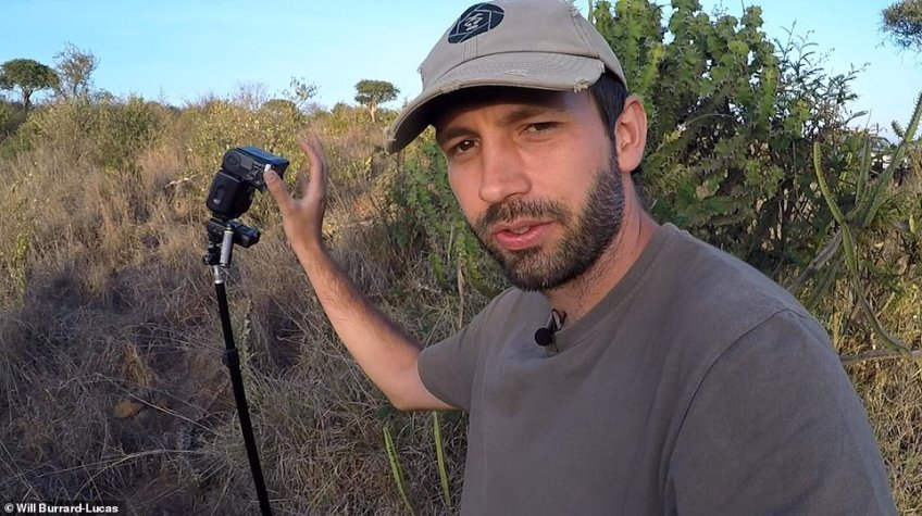 Summing up the black leopard in three words, Burrard-Lucas, pictured with his camera trap, said: 'They are truly stunning, beautiful and elusive'