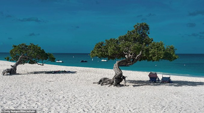 Eagle Beach - famed for itspristine scenery, gnarled Fofoti trees, nesting sea turtles and great water sports - has crept up a spot in 2019, rising from number four to three in the ranking. One TripAdvisor reviewer simply said 'wow', adding: 'The beach was clean and peaceful. Maybe it was the time of the year, but it was not crowded at all'