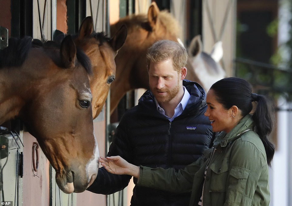 Animal-lover Meghan was eager to say hello with she and Harry seen petting the horses ahead of their tour of the equine centre