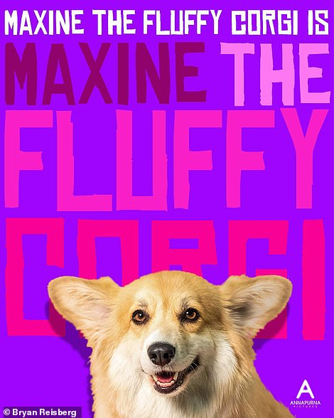 Furry friend: The poster for the dark comedy Sorry to Bother You gets a whole new look with Maxine as the star