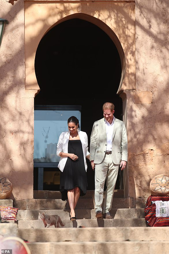 The Duke and Duchess of Sussex could be seen beaming at a stray cat who had wandered into their path as they arrived at their final engagement in Morocco today