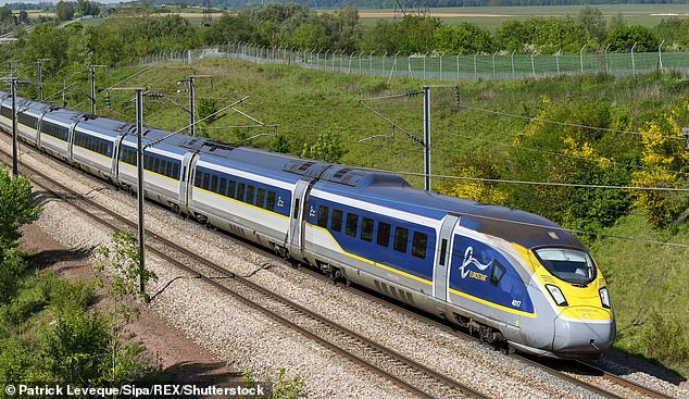 The Eurostar will continue to run 'smoothly' even in the event of a No Deal Brexit,the head of France's SNCF railway company has promised