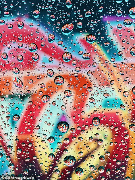 Instagrammer and art director @andrewgriswold took a photo of water droplets in Indiana