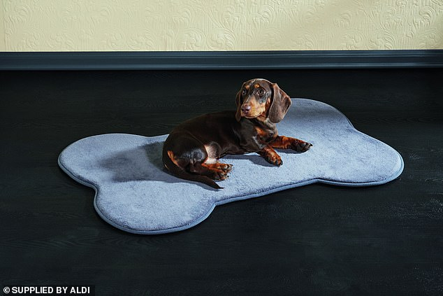 If you're in the market for a new mat for your cat or dog Aldi will be slinging a Memory Foam Pet Mat for $19.99 which is available in four colours