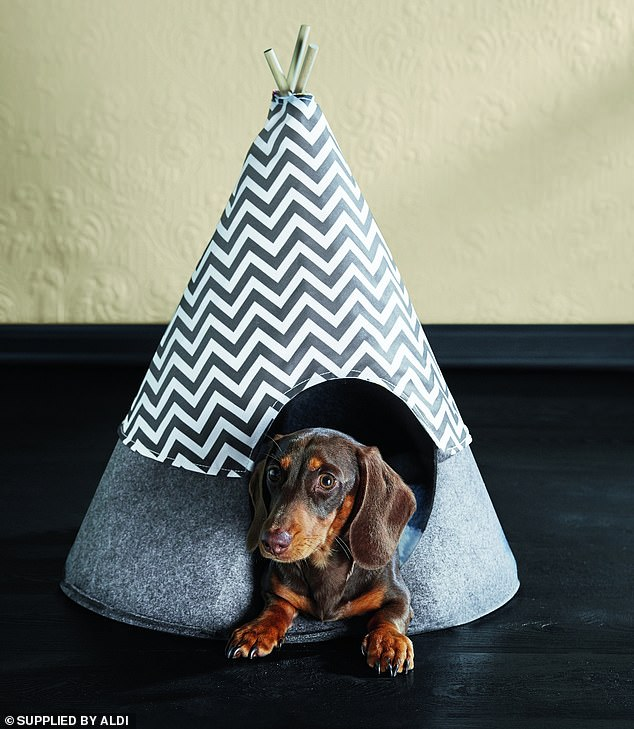 There is also the Pet Teepee for $17.99 which comes with a reversible printed cover and a removable matching cushion which is machine washable