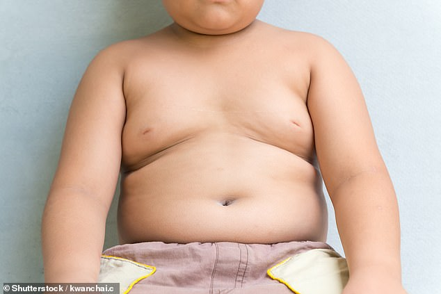 Ban ALL junk food adverts on TV, social media, digital billboards and video games before 9pm to stop children from becoming obese, campaigners demand (stock)