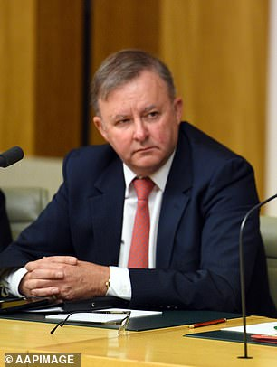Mr Albanese passed a bill which would create a High Speed Rail Authority designed to begin working with states to buy land and secure the corridor needed for train lines