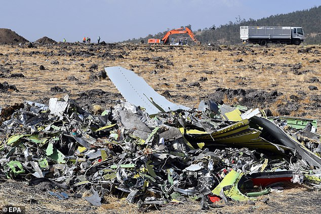 An Ethiopian pilot who saw the crash site minutes after the disaster on Sunday said the plane appeared to have 'slid directly into the ground'