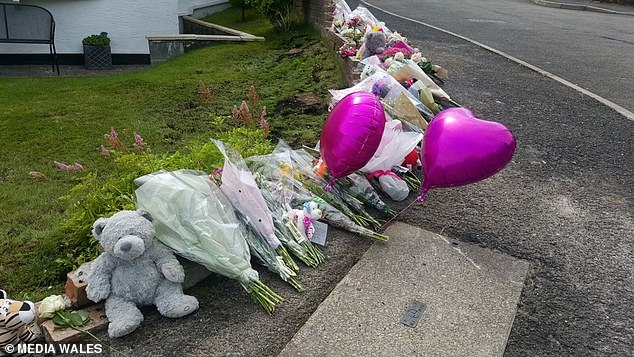 The toddler was killed when she was struck by the runaway Range Rover which had not been parked properly by its owner in Merthyr Tydfil. The driver, Andrew Williams failed to fully engage his car's handbrake and left the vehicle in neutral while parked on private land beside a steep hill. Williams avoided prosecution due to a legal loophole