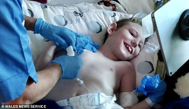 Harvey was born with series of complex conditions, and in January, was diagnosed with complete gut failure. Because he can no longer eat, he is receiving end of life care