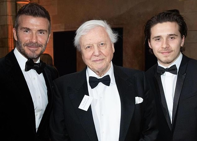Brooklyn Beckham has landed a filming work in the epic Our Planet's epic Wildlife, Sir David, which was presented to a global audience last month