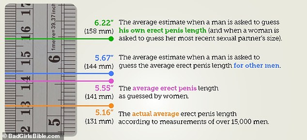 Both men and women estimated their erect penis size - or that of their last sexual partner - to be about half an inch longer than the average man's