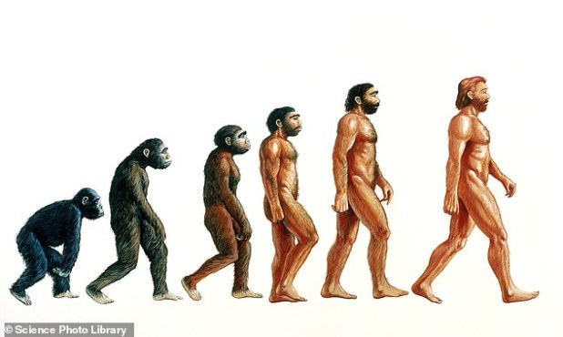 Previous discoveries have improved the understanding of when humans roamed the Earth, going back 100,000 years. An illustration of human evolution is shown.