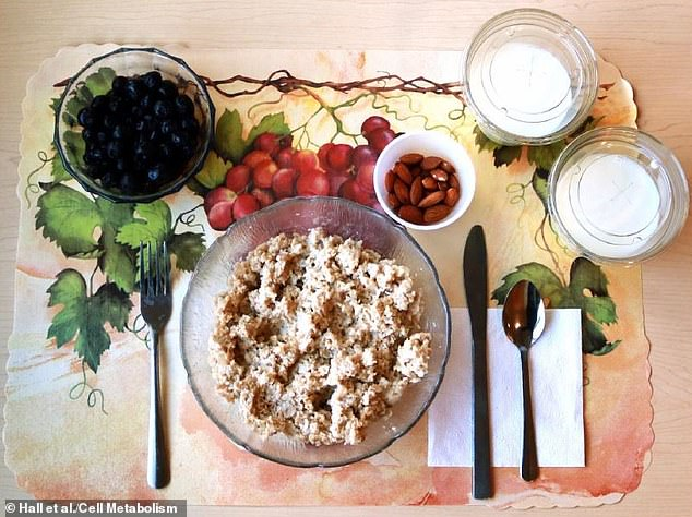 NIH researchers served participants entirely unprocessed meals like this one of chicken salad, blueberries almonds and milk. They had the same nutritional values as the processed meals, yet study participants actually lost an average of two pounds while eating this diet