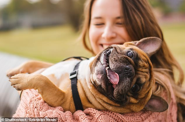 Study of twins found that getting a dog is influenced by an individual's genetics and may even be inherited. It is impossible to say which genes are involved but identical twins agreed far more than non-identical pairs on whether they would have a pet pooch (stock)