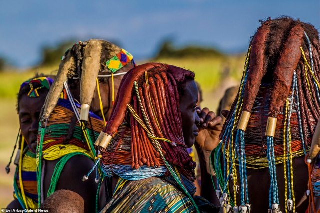 Women use a mixture of oil, crushed tree bark, butter, dried cow dung and herbs to shape their hair into thick dreadlocks, typically numbering between four and six, though there can be more