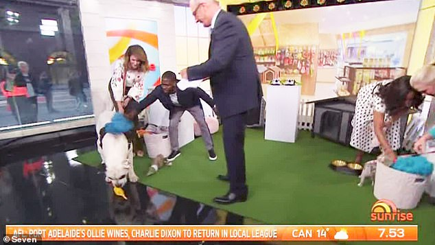 Wild: The Hollywood stars ran riot around the set during a segment involving live animals titled the 'pet selfie challenge' while promoting movie, The Secret Life Of Pets 2