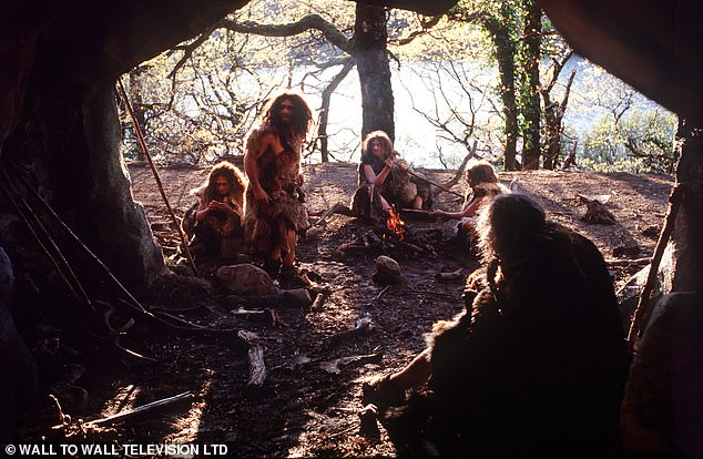 The shared ancestor of the Neanderthals (pictured, in a documentary reconstruction) and the Denisovans mated with a mysterious population of ancient hominins 700,00 years ago