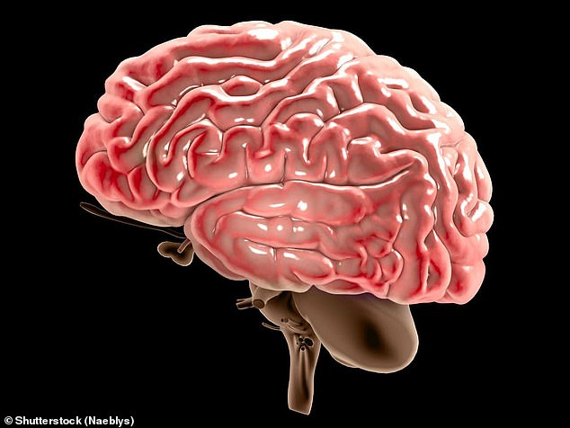 Researchers suggested antidepressant drugs may cause nerve damage or be toxic to healthy cells in the brain, but one expert told MailOnline scientists are increasingly believing depression could be an early sign of dementia (stock image)