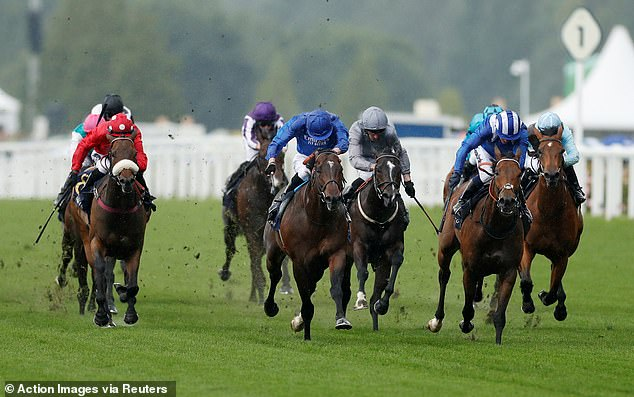 That win came after Blue Point won the five-furlong King's Stand Stakes on Tuesday afternoon