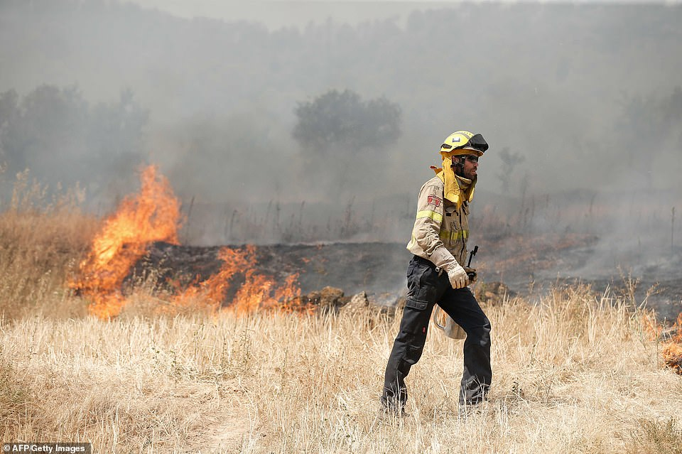 A firefighter tries to extinguish a blaze near Flix as a forest fire raged out of control in the northeastern region of Catalonia yesterday