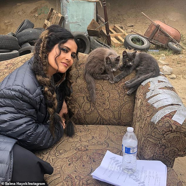 On the bright side: 'I find friends everywhere I go': Salma posted a second shot on the set where she can be seen laying on an old couch outside with two black kittens