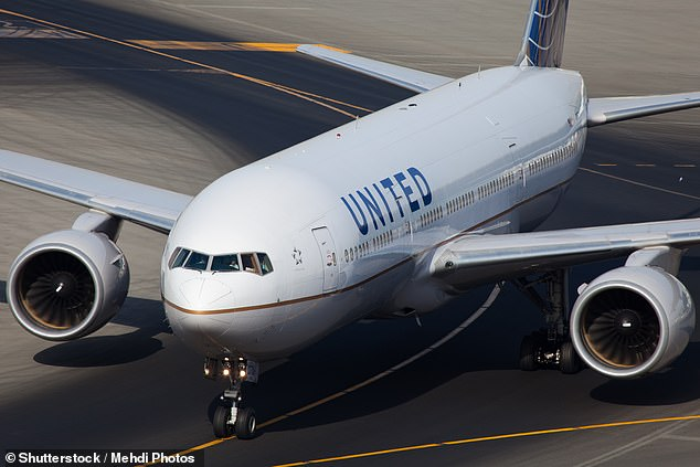 Leading global air carriers American and United Airlines must replace and upgrade cockpit flight displays before November or risk them being declared non-airworthy (file photo)