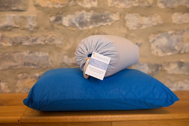 Dreamy: This amazing travel pillow is made from memory foam - and isn't expensive
