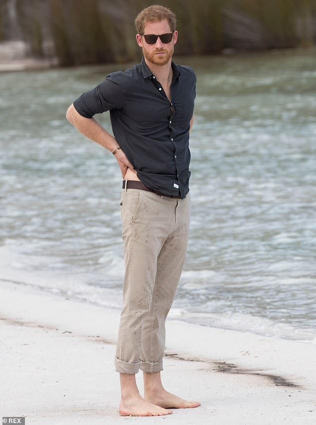 Prince Harry is facing renewed controversy over his trip to Google's 'green' summit in Sicily amid claims that he stayed on a super-yacht. The Duke is pictured inon the shore of Lake McKenzie on Fraser Island during his tour of Australia with Meghan last year