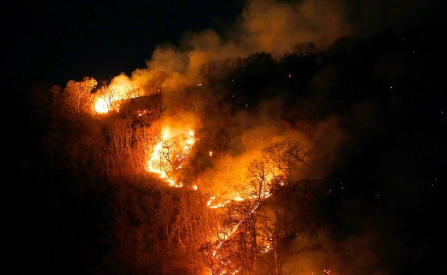 Jair Bolsonaro Is Forced Into Action Over Amazon Wildfire
