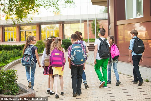 Children as young as six are being taught about touching or 'stimulating' their own genitals in lesson that are part of a controversial new sex and relationships teaching programme called All About Me (stock image)