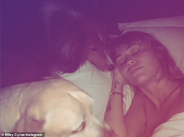 Selfless: Miley snapped a nude selfie in bed. The text said her adorable dogs would love with 'no questions' asked in return for 'loyalty, reliability and faithfulness'