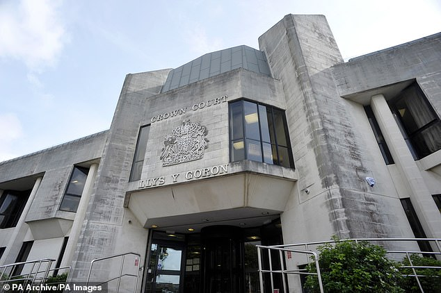 The defendant, who cannot be named to protect the identity of his alleged victims, denies 36 counts of rape, including one of procuring rape, and a count of assault by penetration. His trial at Swansea Crown Court (pictured) is expected to last three weeks