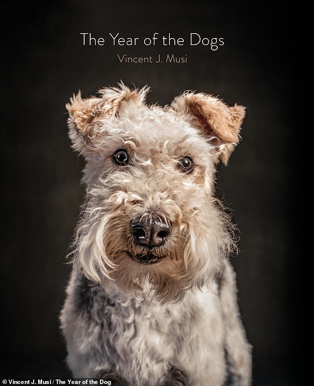 The Year of the Dog, by Vincent J. Musi, published by Chronicle, is available for purchase now on Amazon