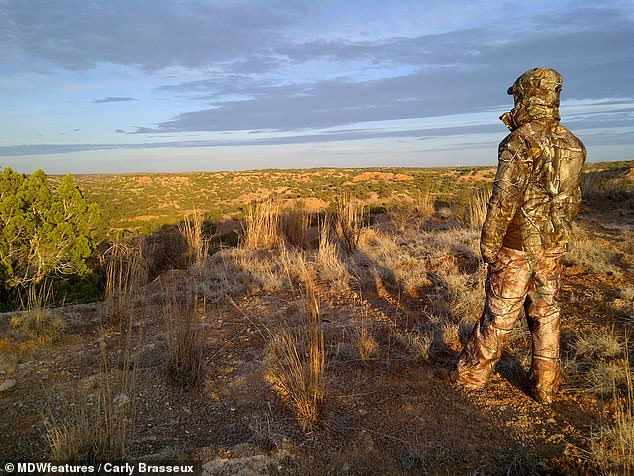 Carly looking into the distance in the wilderness. The other said hunting gave the animals a 'quick and easy end'