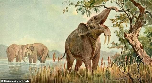 An artist's interpretation of an ancient megaherbivore, Gomphotherium pyrenaicum, which once contributed to a greater biodiversity in east Africa.