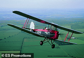 One of the Tiger Moth planes (pictured above)