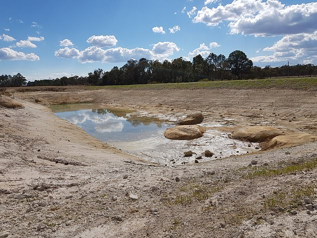 In a raw outpouring of desperation on Alan Jones' 2GB radio show, the farmer called Mark begged Prime Minister Scott Morrison to lift his town out of drought devastation (pictured drought affected land in Stanthorpe on Queensland's southern border)
