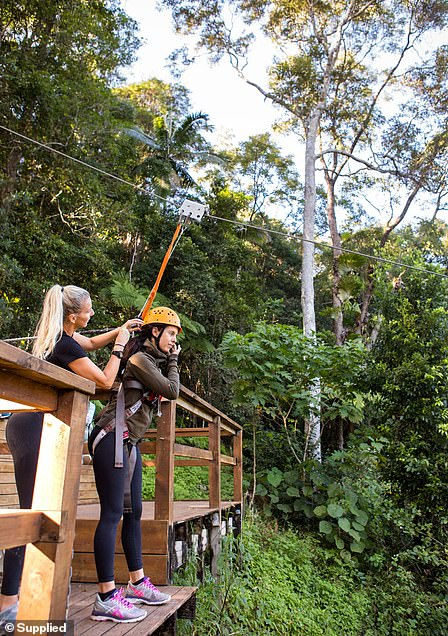 Flying fox pictured