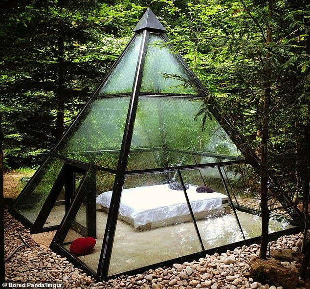 A glass-shaped pyramid in the middle of the forest which looks like a see-through prison located out in the woods