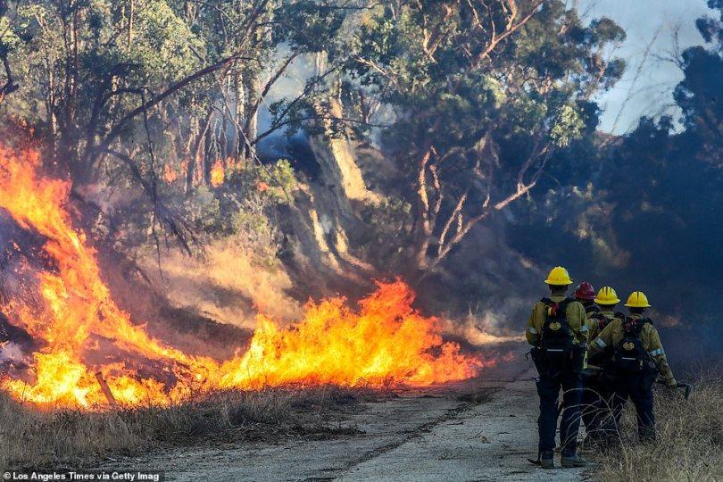 Firefighter walk alongside the blazeburning behind Olive View Medical Center in Sylmar on Friday